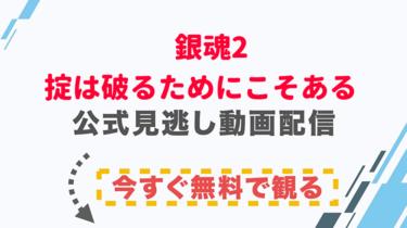【映画】銀魂2 掟は破るためにこそあるの配信情報|公式の無料見逃し動画視聴方法